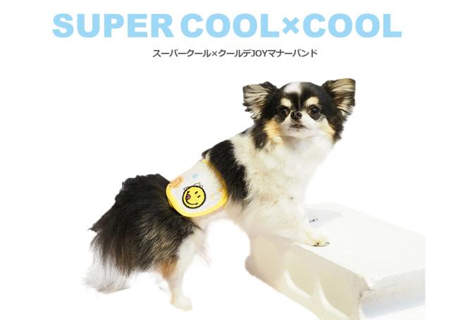 2020夏物新作スーパークール×クール JOYマナーバンド(2柄)7214[犬用マナーバンド]