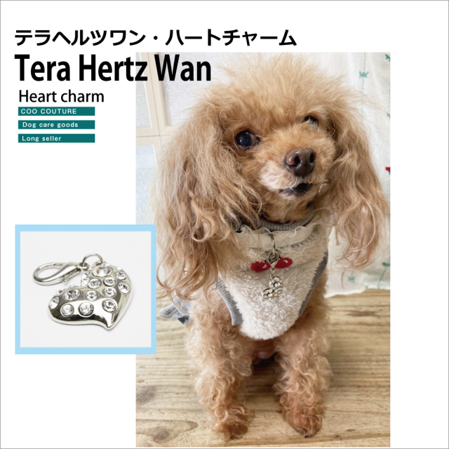 Xmasプレゼントに最適! ラブリーなキラキラハート! 【Tera Hertz Wan ハートチャーム】8052[犬用アクセサリー][M/L]