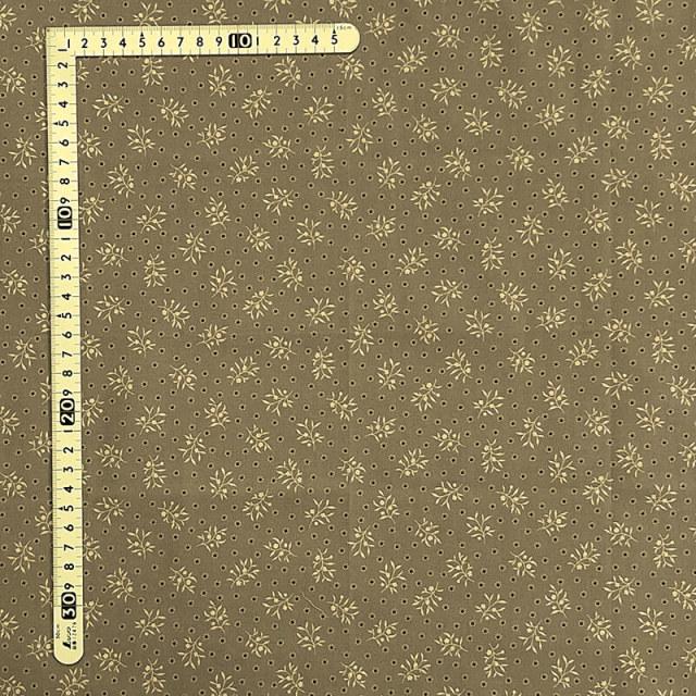 【こうの早苗先生デザインプリント】(JKNS-082)