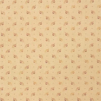 【キャリコ】50x110cm (UCR-272H)