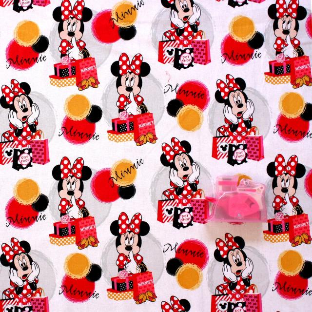 ディズニーミッキーマウス