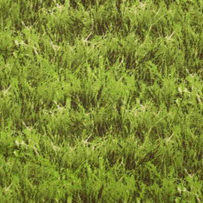 【植物・葉っぱ柄】(UOTS-396)