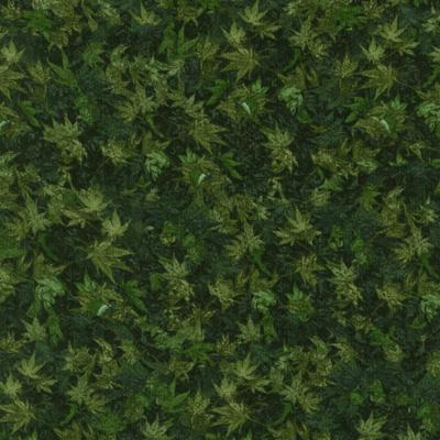 植物・葉っぱ柄 50x110cm(UOTS-409H)