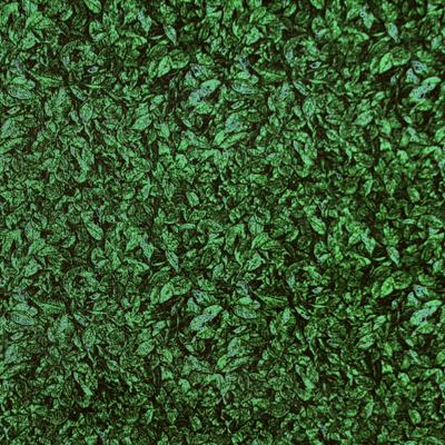 植物・葉っぱ柄 50x110cm(UOTS-410H)