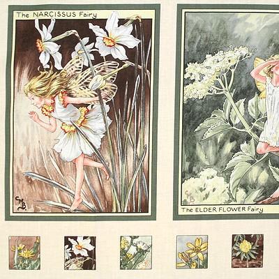 【Flower Fairies】フラワーフェアリー パネルプリント 60×110cm(UPG-018)