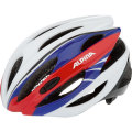 ALPINA HELMET CYBRIC WT アルピナ ヘルメット サイブリック WT