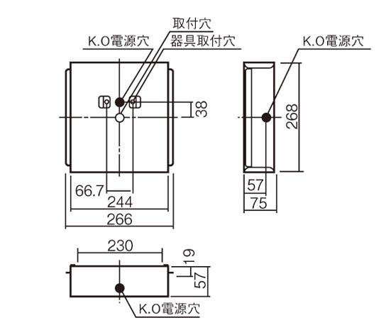 FK21750.jpg