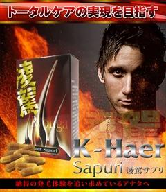 【送料無料】【まとめ買い】毛髪活性成分 馬プラセンタエキス・高麗人参エキス・コラーゲンペプチド・大豆イソフラボン含有 サプリメント :K-Haer Sapuri ryouga(凌駕サプリ) ×2個セット