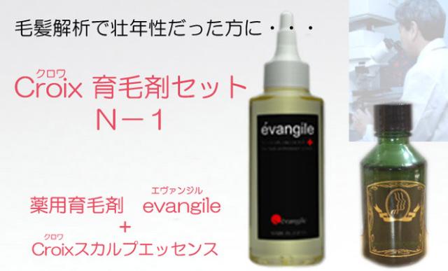 育毛対策 薬用育毛剤 エヴァンジル(医薬部外品)とCroixスカルプエッセンスN-1 お得なセット : Croix育毛剤セットN-1(1ヶ月分)