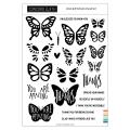 コンコード&ナインス  Bold Butterflies