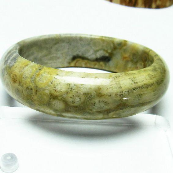 フォッシルコーラル バングル  化石珊瑚60mm [T23-2346]