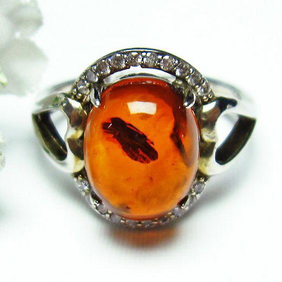 レッドアンバー 赤琥珀 指輪 (15号)[T746-2399]