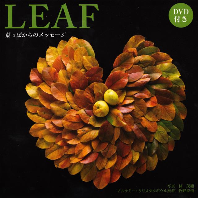 DVD付き写真集「LEAF 葉っぱからのメッセージ」