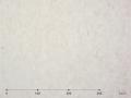 【マテリオ】 和紙シート雲竜 白 /1010mm幅×50cm単位(切り売り)