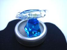 ガラスコレクション イカ&LEDライト