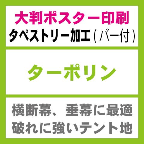 ターポリン-タペストリー印刷(バー有り)W3000×H2000