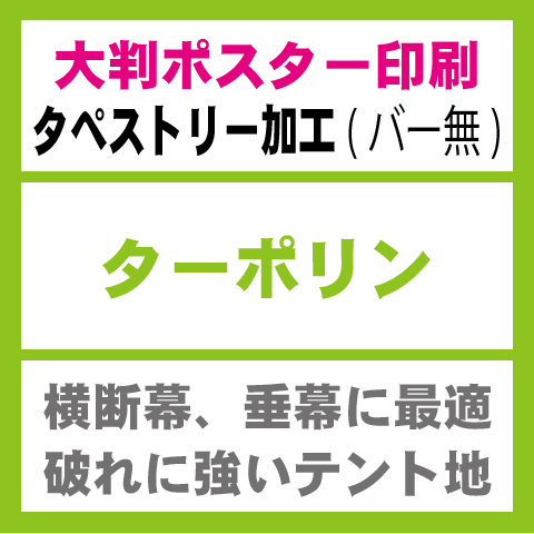 ターポリン-タペストリー印刷(バー無し)