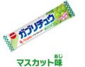 ガブリチュウ マスカット味(20本入り)