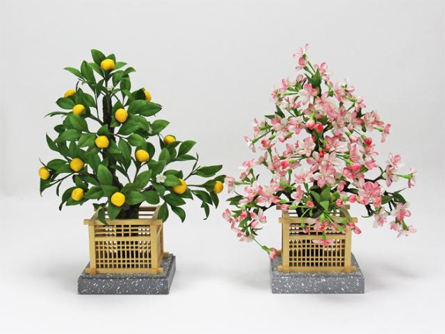 164032桜橘