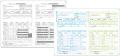 SR250 源泉徴収票・給与支払報告書セット