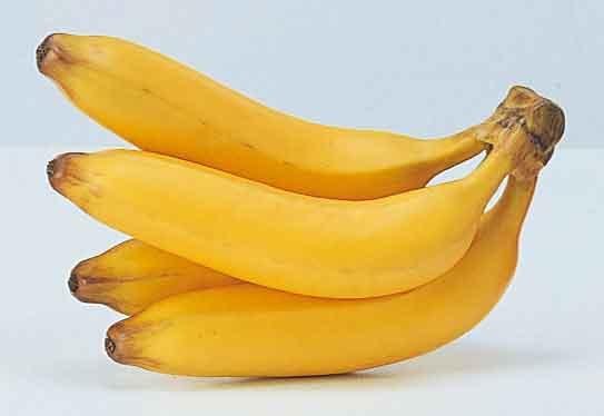 本物そっくり!果物単品(合成樹脂製)・バナナ