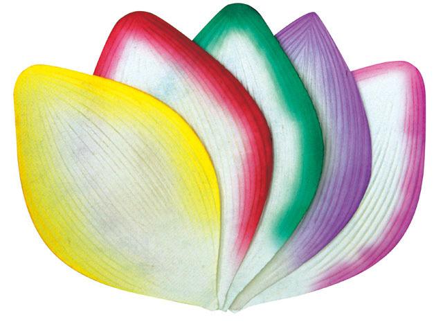 高級散華 五色のハスの花弁 200枚1箱