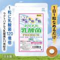 おやすみ乳酸菌 クマザサ なた豆 プロポリス キシリトール配合 息スッキリサプリメント