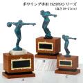 ボウリング専用トロフィーB2589シリーズ