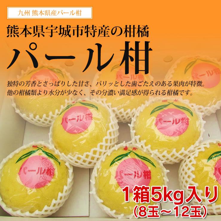 【送料無料】熊本県産温州みかん高薮さんの「こだわり極上みかん」10kgお歳暮