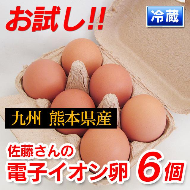 元気な鶏をヒナから育てる!九州熊本産佐藤さんの「電子イオン卵6個入り」