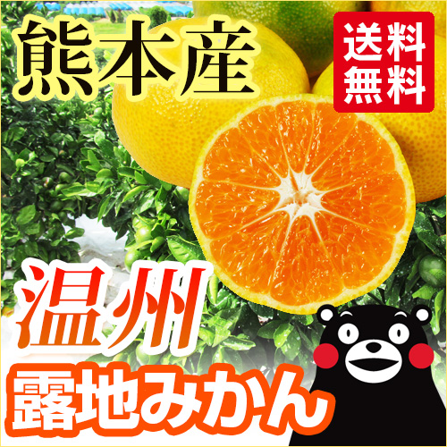 日本一早い露地ミカン熊本オリジナルブランド肥のあかり5キロ