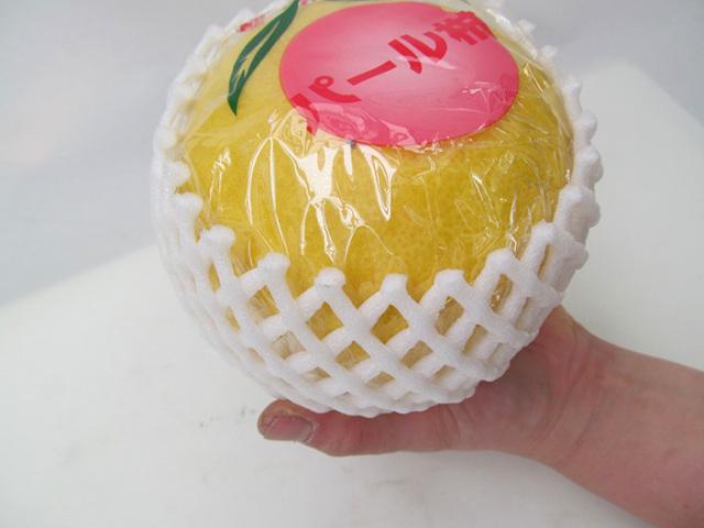 【送料無料】熊本県産晩白柚(バンペイユ)1箱2玉入りお歳暮