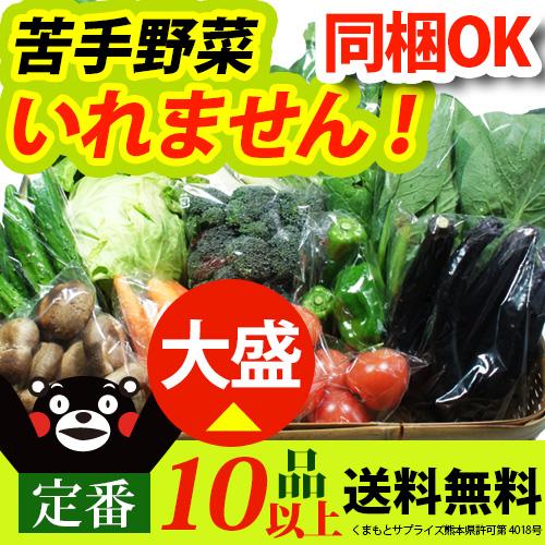 ≪送料無料≫ 当店人気No.1☆ 九州 熊本産 定番野菜大盛 たっぷり くまもと野菜セット