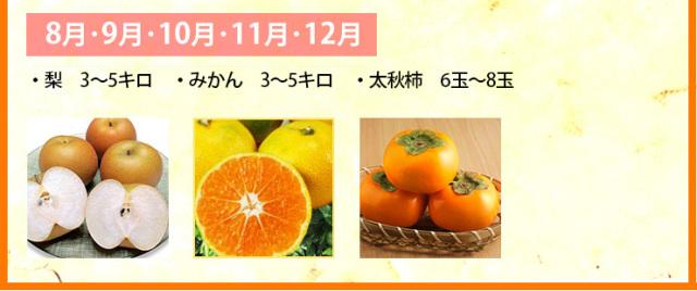 ≪送料無料≫九州熊本産フルーツセット≪旬の果物と野菜セット≫朝食やデザート、スムージーなど、いつも果物を楽しみたい方へ。