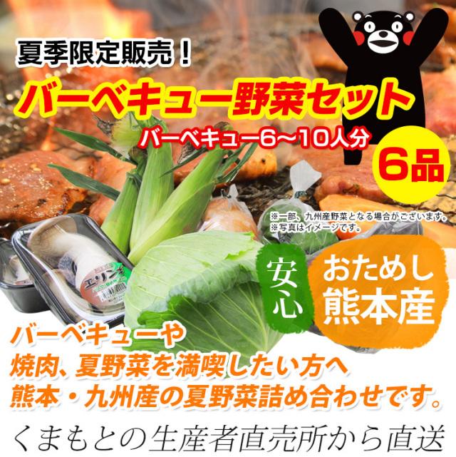 ≪送料無料≫九州熊本産夏季限定販売!バーベキュー野菜セット