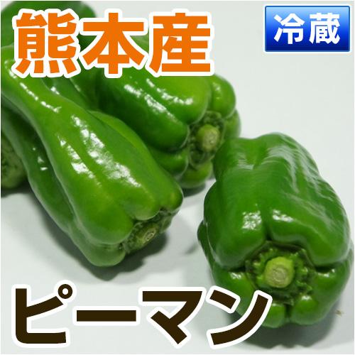 熊本県宇城市産ピーマン