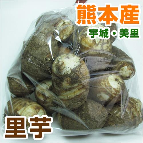 熊本県産赤芽里芋