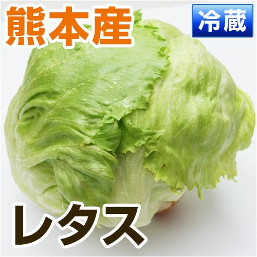 熊本県・大分県産レタス