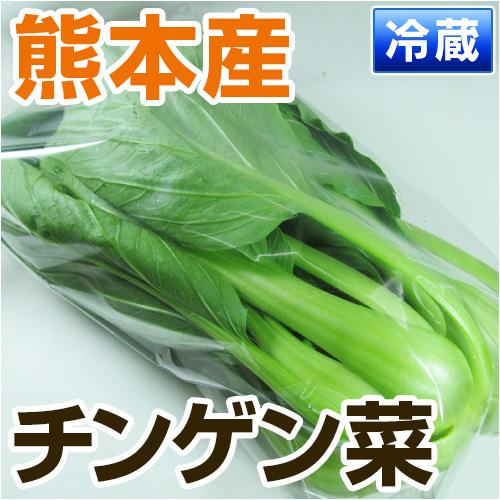 熊本県産チンゲン菜