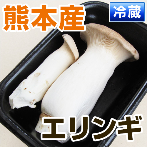 熊本県産エリンギ