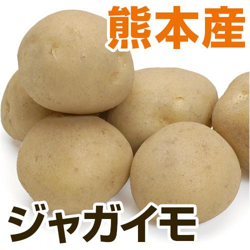 熊本県新ジャガイモ