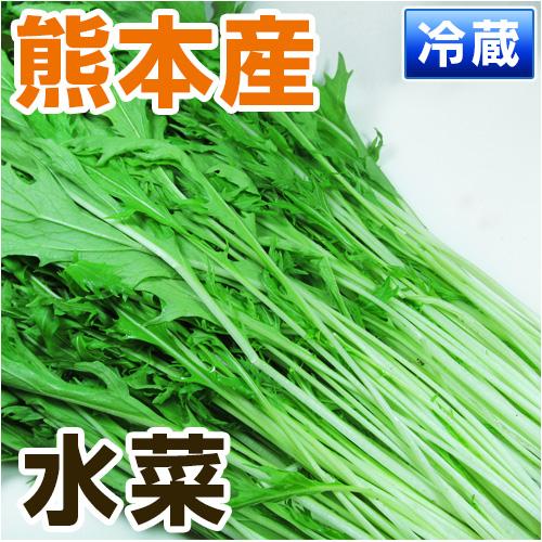 熊本県産水菜