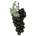 【食品サンプル・フルーツ・野菜】ブドウの房 ブラック