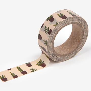 マスキングテープ 30 : Succulent