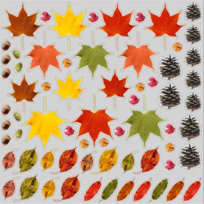 秋の葉っぱ&木の実シール