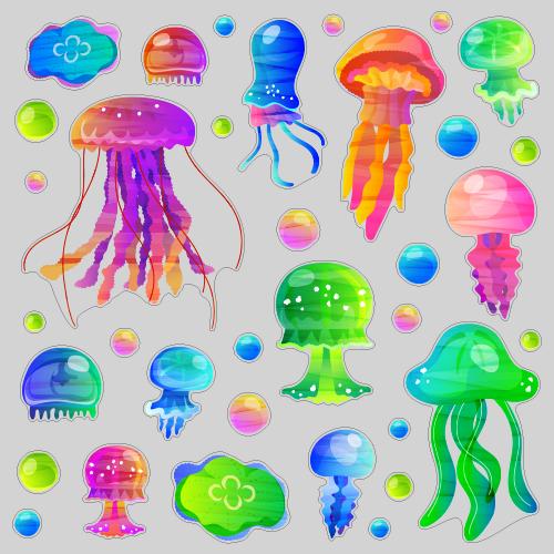 【VP】JellyFishの写真