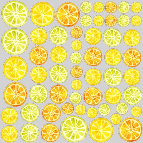 【VP】オレンジ&レモンの写真