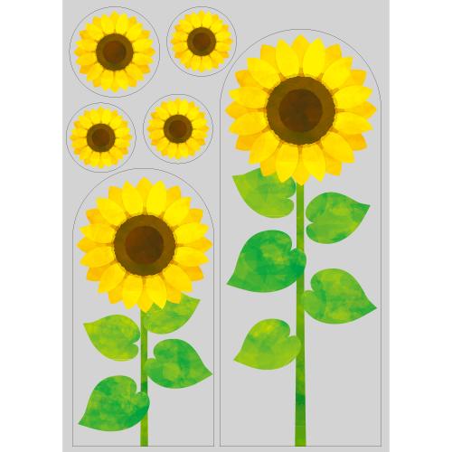 【PP】向日葵の写真