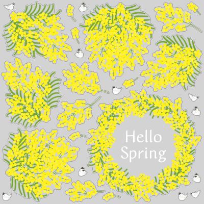 【VP】季節の花シリーズ1-3月 ミモザの写真