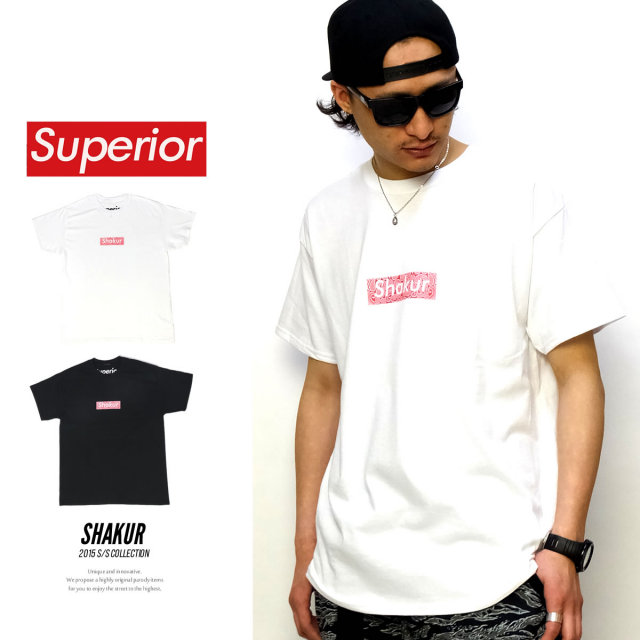 SUPERIOR スーペリア 半袖Tシャツ SHAKUR SUPSP15-002 5V4037